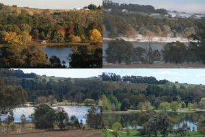 lakeview-views